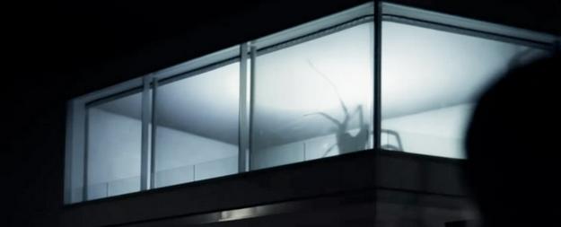 Friedrich Van Schoor - Spin - Spider
