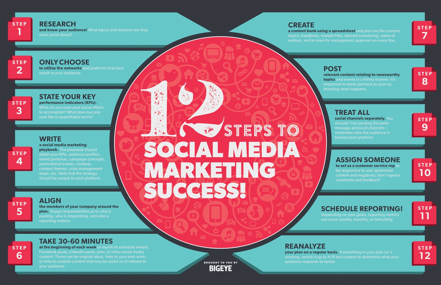 12-steps-to-social-media-marketing-success-infographic
