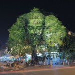 projection-mapping-bomen4-615x409