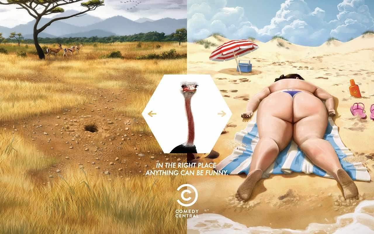 01-ostrich-cc-press_aotw